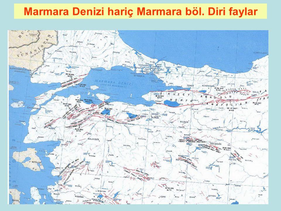 88 Türkiye Diri Fay Haritası