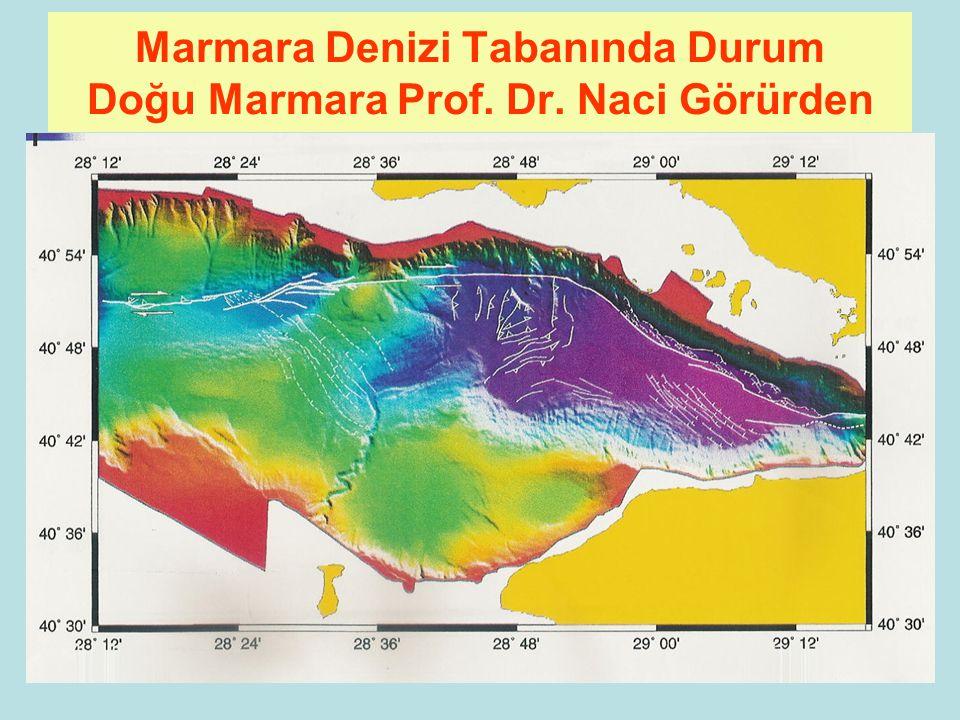 91 Marmara Denizi Tabanında Durum Prof. Dr. Naci Görürden
