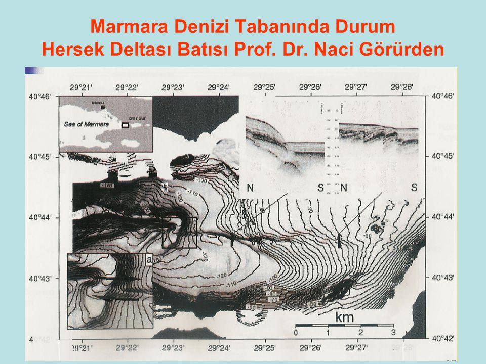 92 Marmara Denizi Tabanında Durum Doğu Marmara Prof. Dr. Naci Görürden
