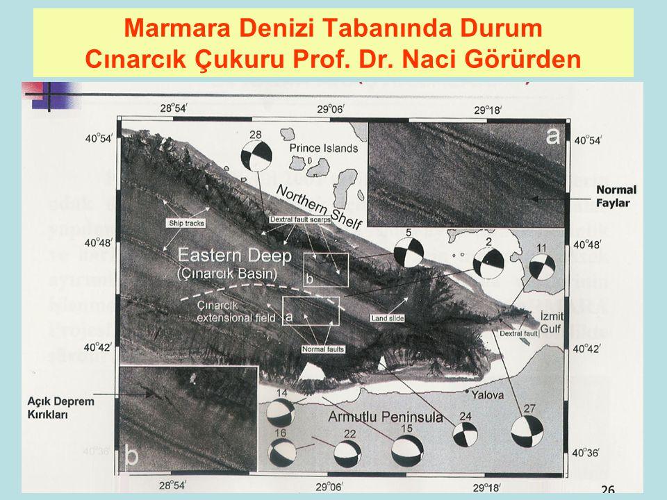 93 Marmara Denizi Tabanında Durum Hersek Deltası Batısı Prof. Dr. Naci Görürden