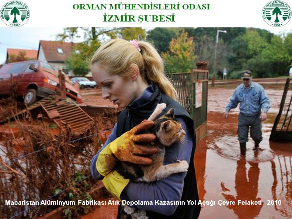 Macaristan Alüminyum Fabrikası Atık Depolama Kazasının Yol Açtığı Çevre Felaketi 2010