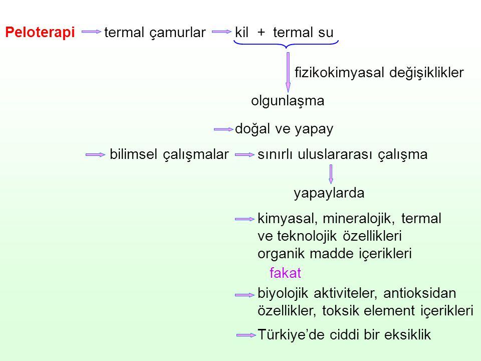 Jeoloji Mühendisliği Prof.Dr. Asuman G. Türkmenoğlu (Grup Başkanı) Prof.
