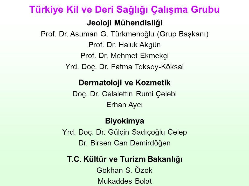 Jeoloji Mühendisliği Prof. Dr. Asuman G. Türkmenoğlu (Grup Başkanı) Prof. Dr. Haluk Akgün Prof. Dr. Mehmet Ekmekçi Yrd. Doç. Dr. Fatma Toksoy-Köksal D