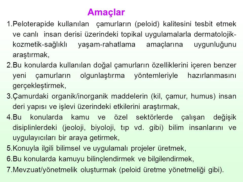 Çalışmalar Bildiriler Çelebi, C.R., Aycı, E., Yıldırım, S., 2006.