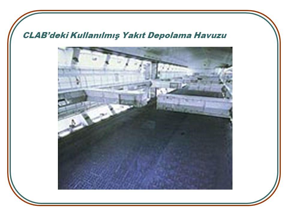 CLAB'deki Kullanılmış Yakıt Depolama Havuzu