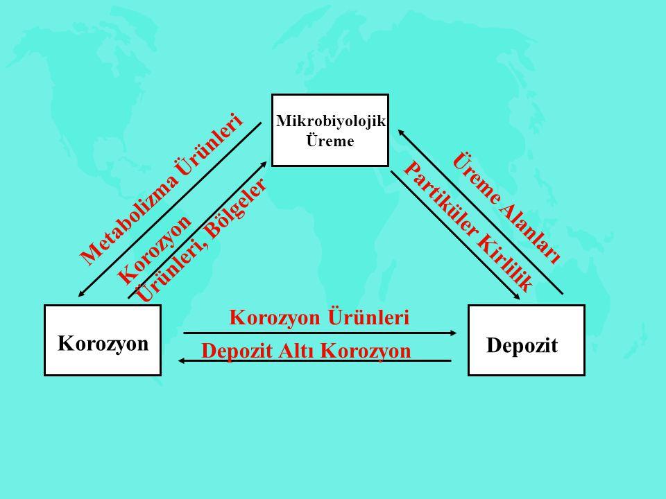 Korozyon Depozit Mikrobiyolojik Üreme Mikrobiyolojik Üreme Korozyon Ürünleri Depozit Altı Korozyon Üreme Alanları Partiküler Kirlilik Metabolizma Ürün