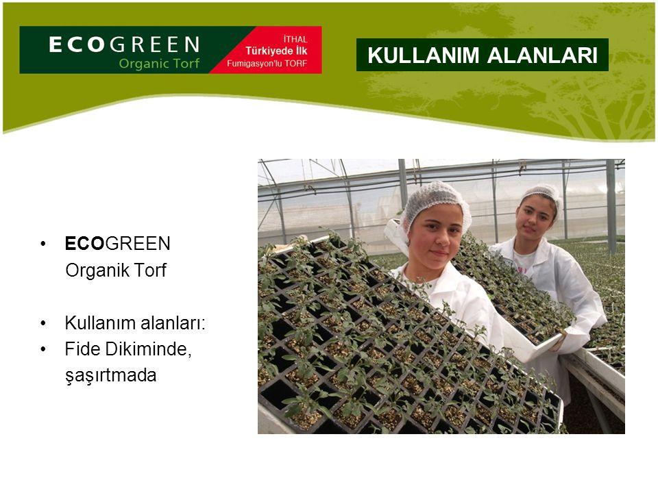 ECOGREEN Organik Torf Kullanım alanları: Fide Dikiminde, şaşırtmada KULLANIM ALANLARI