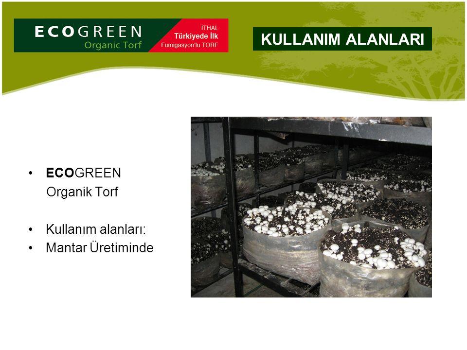 ECOGREEN Organik Torf Kullanım alanları: Mantar Üretiminde KULLANIM ALANLARI