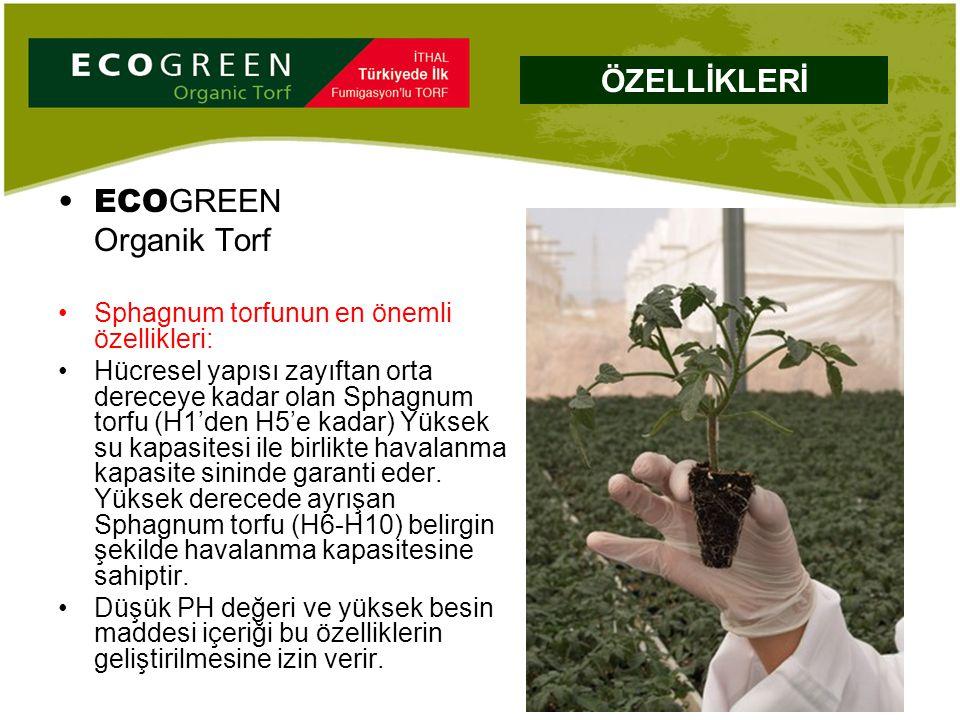 ECO GREEN Organik Torf Sphagnum torfunun en önemli özellikleri: Hücresel yapısı zayıftan orta dereceye kadar olan Sphagnum torfu (H1'den H5'e kadar) Y