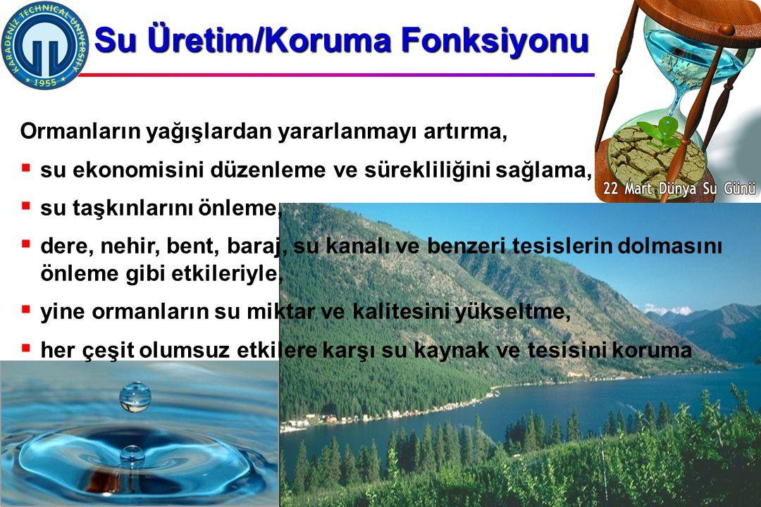 İstanbul, 2007 DSİ, 10 Şubat 2011, Trabzon, ©EZB Su Üretim/Koruma Fonksiyonu Ormanların yağışlardan yararlanmayı artırma,  su ekonomisini düzenleme ve sürekliliğini sağlama,  su taşkınlarını önleme,  dere, nehir, bent, baraj, su kanalı ve benzeri tesislerin dolmasını önleme gibi etkileriyle,  yine ormanların su miktar ve kalitesini yükseltme,  her çeşit olumsuz etkilere karşı su kaynak ve tesisini koruma
