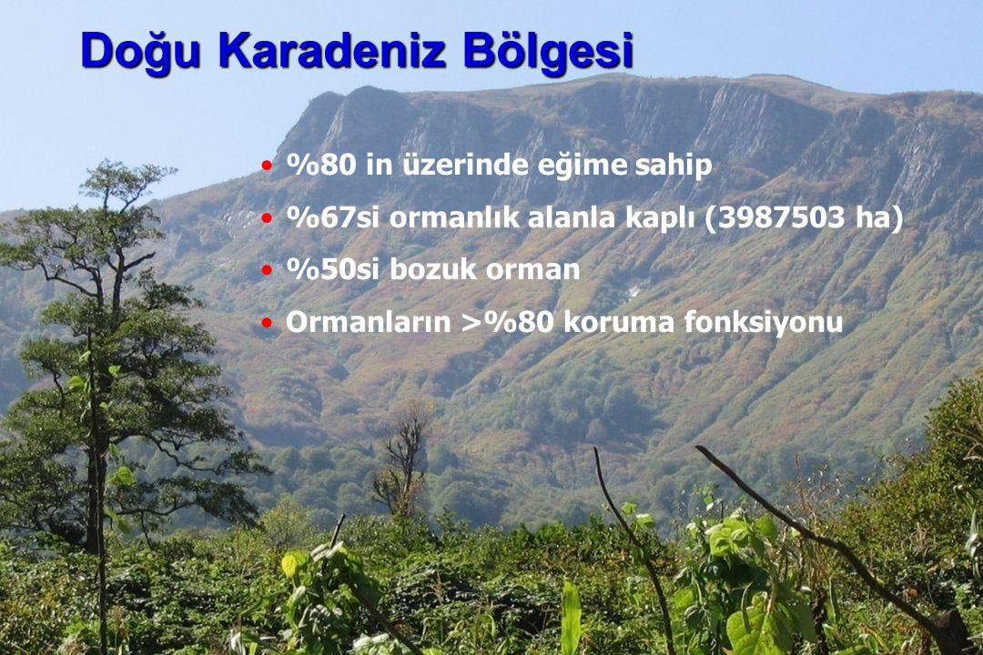 İstanbul, 2007 DSİ, 10 Şubat 2011, Trabzon, ©EZB %80 in üzerinde eğime sahip %67si ormanlık alanla kaplı (3987503 ha) %50si bozuk orman Ormanların >%80 koruma fonksiyonu Doğu Karadeniz Bölgesi