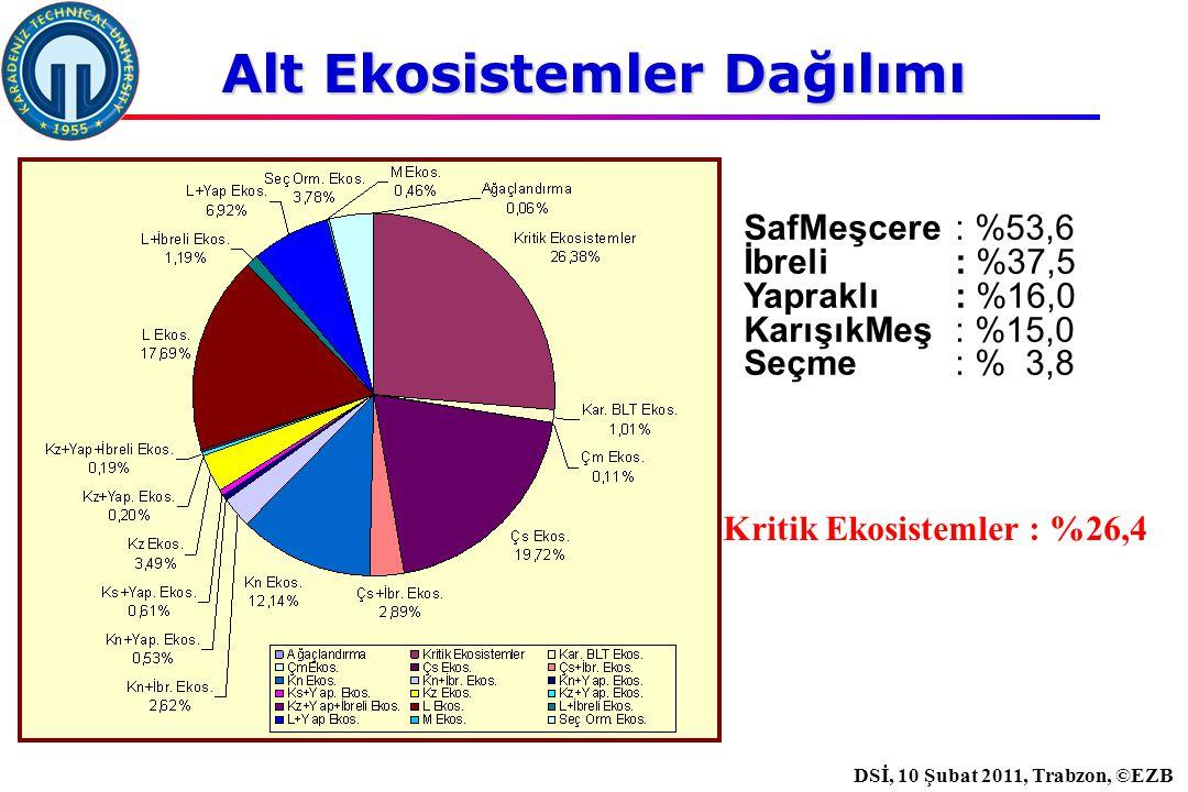 İstanbul, 2007 DSİ, 10 Şubat 2011, Trabzon, ©EZB Kritik Ekosistemler : %26,4 SafMeşcere : %53,6 İbreli : %37,5 Yapraklı : %16,0 KarışıkMeş: %15,0 Seçme : % 3,8 Alt Ekosistemler Dağılımı