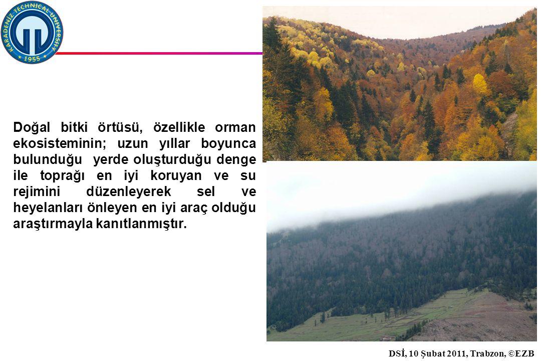 İstanbul, 2007 DSİ, 10 Şubat 2011, Trabzon, ©EZB 29 Doğal bitki örtüsü, özellikle orman ekosisteminin; uzun yıllar boyunca bulunduğu yerde oluşturduğu denge ile toprağı en iyi koruyan ve su rejimini düzenleyerek sel ve heyelanları önleyen en iyi araç olduğu araştırmayla kanıtlanmıştır.