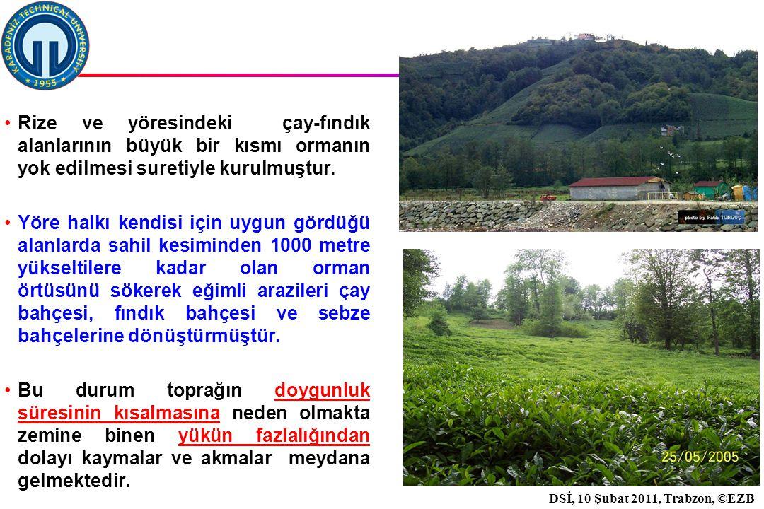İstanbul, 2007 DSİ, 10 Şubat 2011, Trabzon, ©EZB 30 Rize ve yöresindeki çay-fındık alanlarının büyük bir kısmı ormanın yok edilmesi suretiyle kurulmuştur.