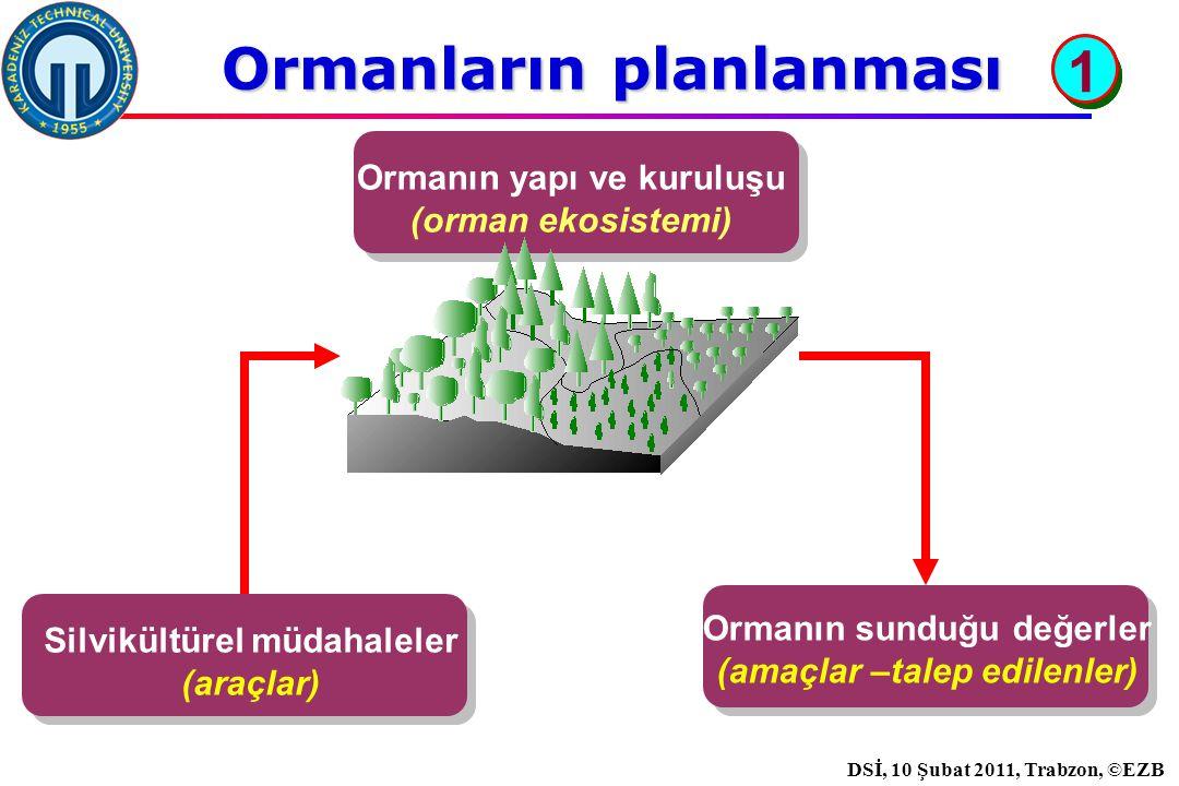 İstanbul, 2007 DSİ, 10 Şubat 2011, Trabzon, ©EZB Ormanların planlanması Silvikültürel müdahaleler (araçlar) Ormanın sunduğu değerler (amaçlar –talep edilenler) Ormanın yapı ve kuruluşu (orman ekosistemi) 1