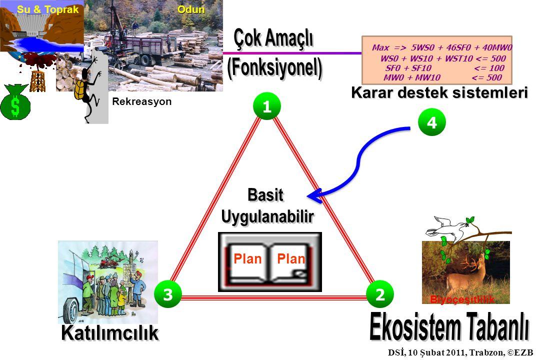 İstanbul, 2007 DSİ, 10 Şubat 2011, Trabzon, ©EZB Orman Değer/Fonksiyonları Ekonomik SağlıklıVerimliAdil Sürdürülebilir Sosyo- kültürel Ekolojik Biyoçeşitlilik