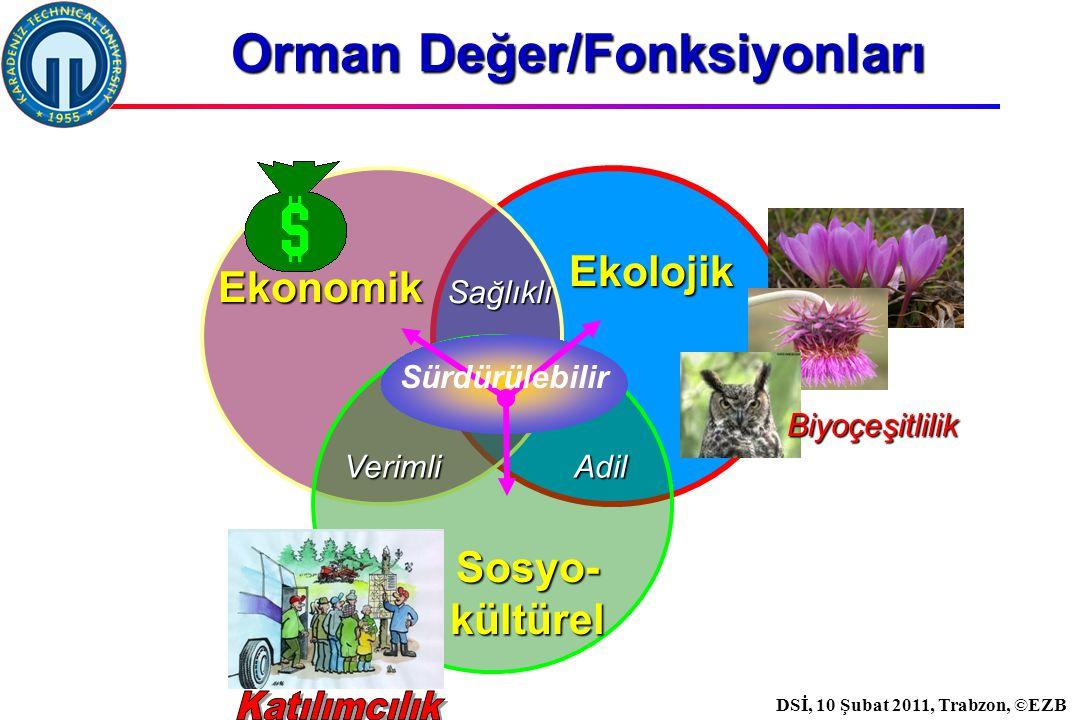 İstanbul, 2007 DSİ, 10 Şubat 2011, Trabzon, ©EZB Fonksiyonlara göre dağılım 2008 yılında; 1,451,047 ha alan KORUYUCU özelliği ile korumaya 0,613,626 ha alan su havzalarını korumaya 1,832,770 ha alan toprak korumaya