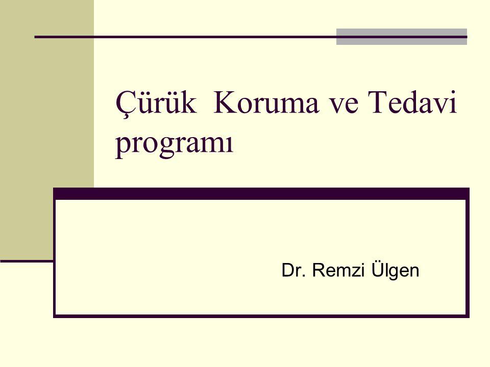 Çürük Koruma ve Tedavi programı Dr. Remzi Ülgen
