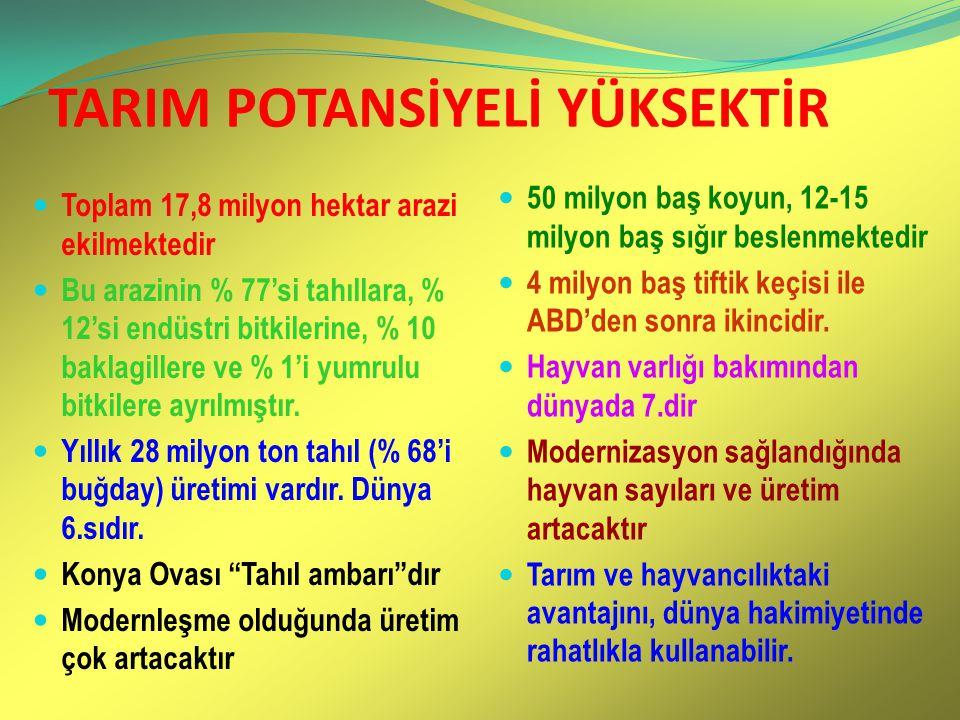 TARIM POTANSİYELİ YÜKSEKTİR Toplam 17,8 milyon hektar arazi ekilmektedir Bu arazinin % 77'si tahıllara, % 12'si endüstri bitkilerine, % 10 baklagiller