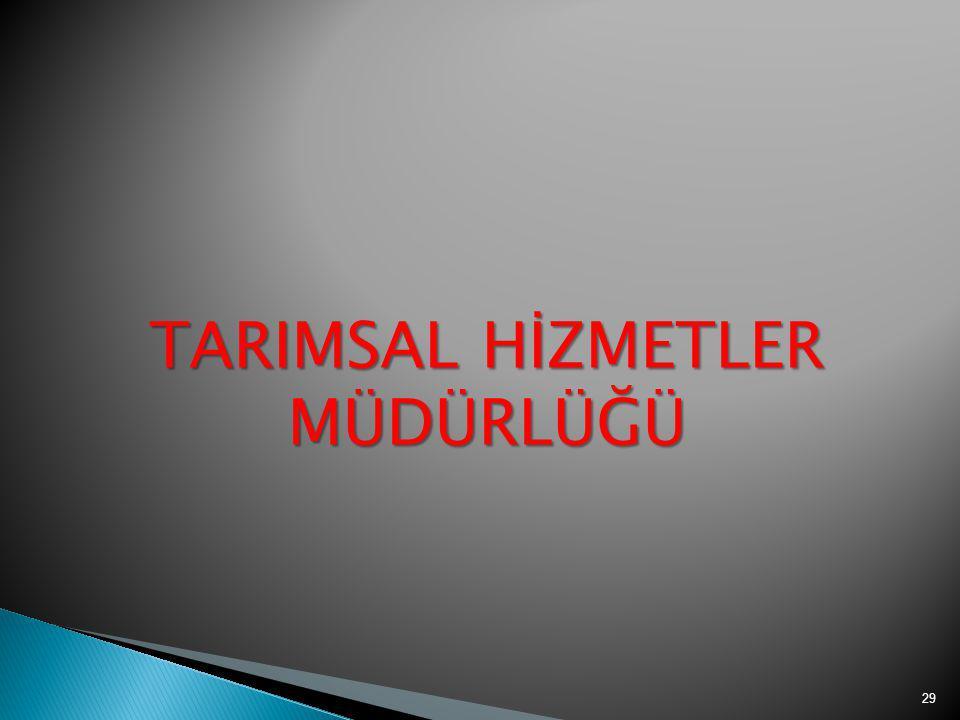 TARIMSAL HİZMETLER MÜDÜRLÜĞÜ 29