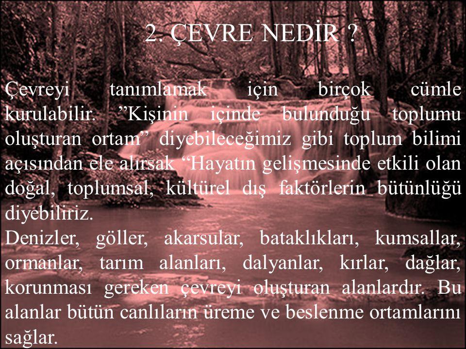 3.EKOLOJİ NEDİR .