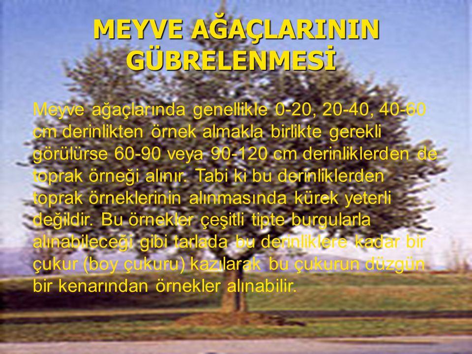 MEYVE AĞAÇLARININ GÜBRELENMESİ MEYVE AĞAÇLARININ GÜBRELENMESİ Meyve ağaçlarında genellikle 0-20, 20-40, 40-60 cm derinlikten örnek almakla birlikte ge