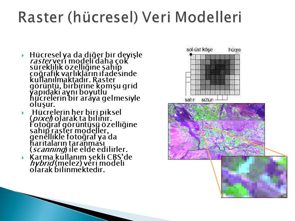  Hücresel ya da diğer bir deyişle raster veri modeli daha çok süreklilik özelliğine sahip coğrafik varlıkların ifadesinde kullanılmaktadır.