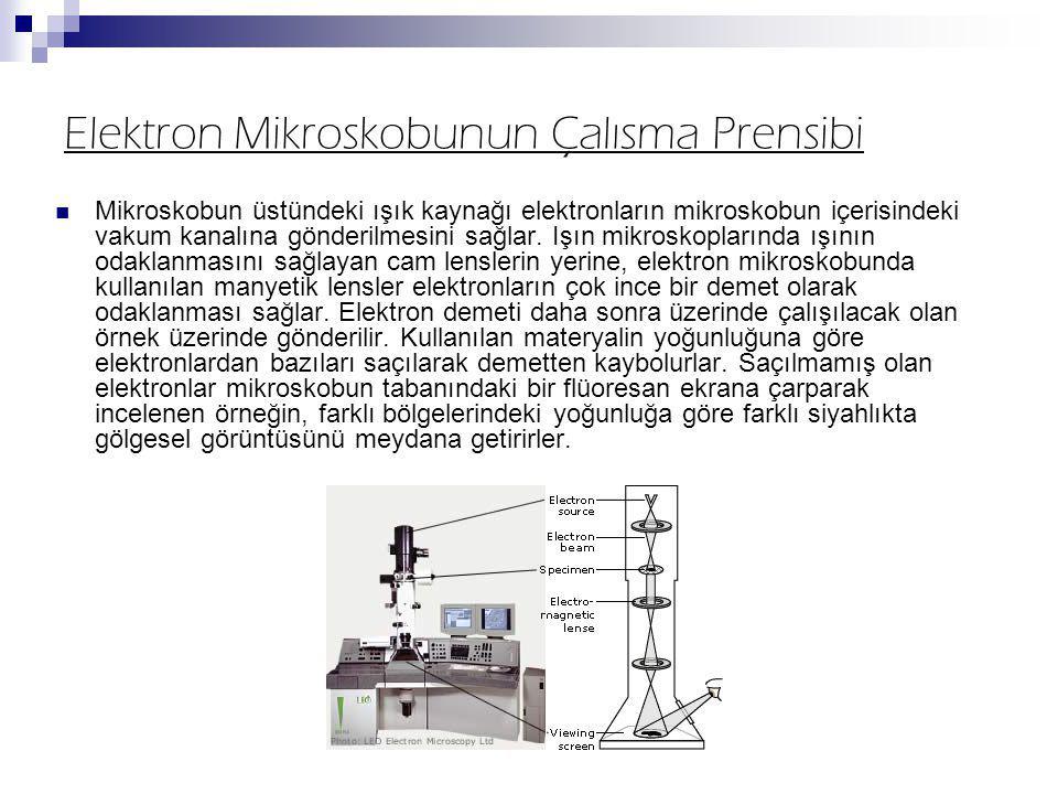 Elektron Mikroskobunun Çalısma Prensibi Mikroskobun üstündeki ışık kaynağı elektronların mikroskobun içerisindeki vakum kanalına gönderilmesini sağlar