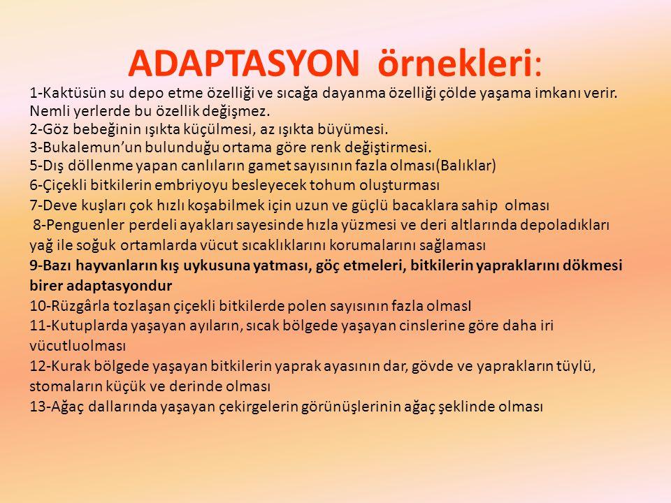 ADAPTASYON örnekleri: 1-Kaktüsün su depo etme özelliği ve sıcağa dayanma özelliği çölde yaşama imkanı verir. Nemli yerlerde bu özellik değişmez. 2-Göz