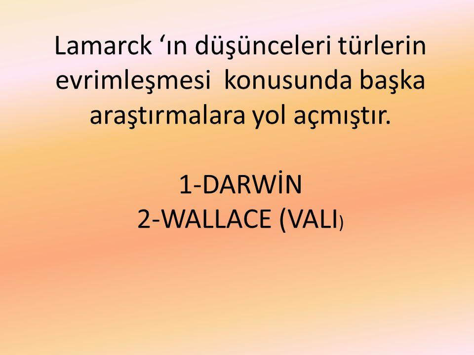 Lamarck 'ın düşünceleri türlerin evrimleşmesi konusunda başka araştırmalara yol açmıştır. 1-DARWİN 2-WALLACE (VALI )