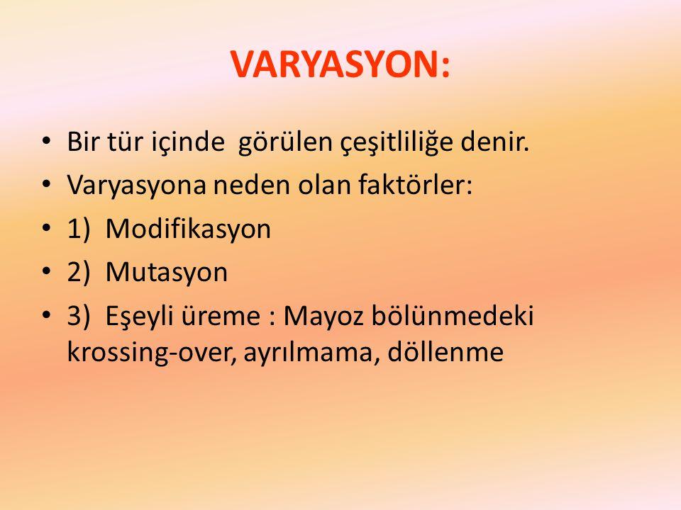 VARYASYON: Bir tür içinde görülen çeşitliliğe denir. Varyasyona neden olan faktörler: 1) Modifikasyon 2) Mutasyon 3) Eşeyli üreme : Mayoz bölünmedeki