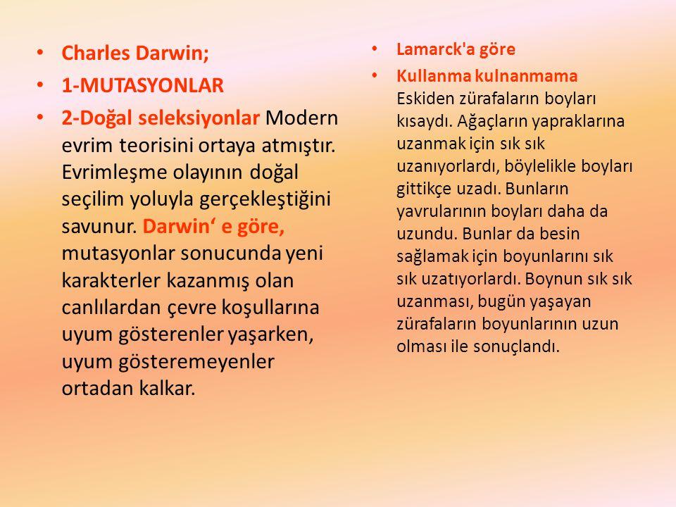 Charles Darwin; 1-MUTASYONLAR 2-Doğal seleksiyonlar Modern evrim teorisini ortaya atmıştır. Evrimleşme olayının doğal seçilim yoluyla gerçekleştiğini