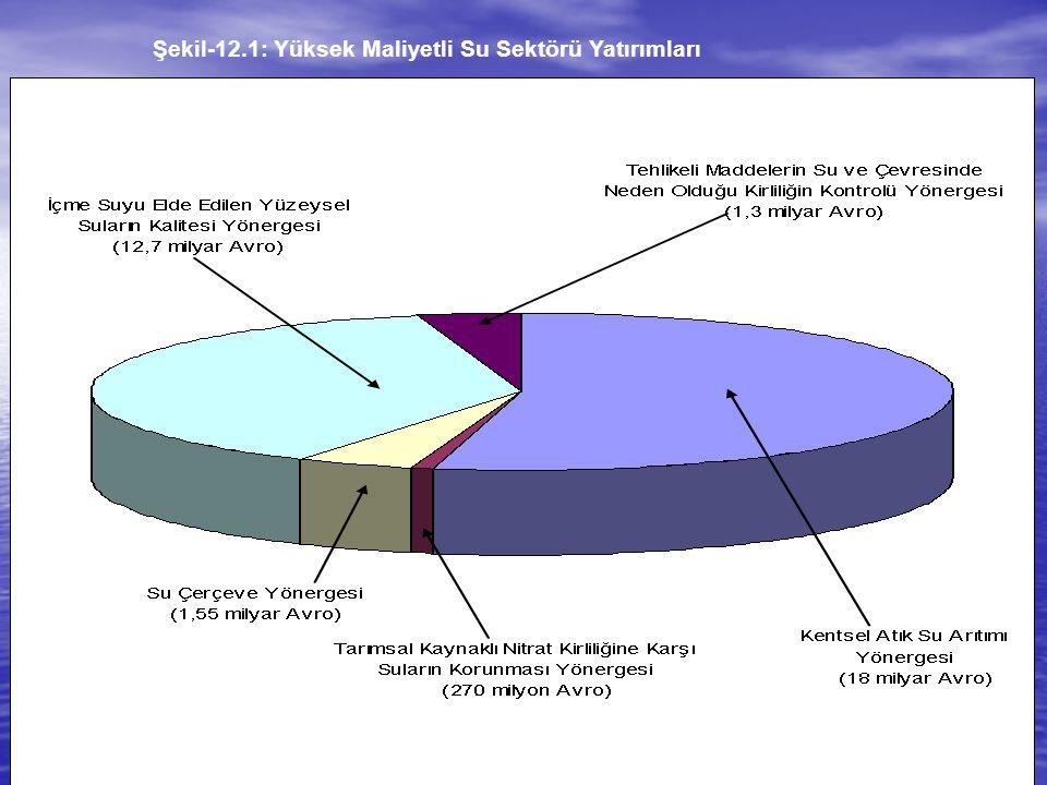 44 Şekil-12.1: Yüksek Maliyetli Su Sektörü Yatırımları