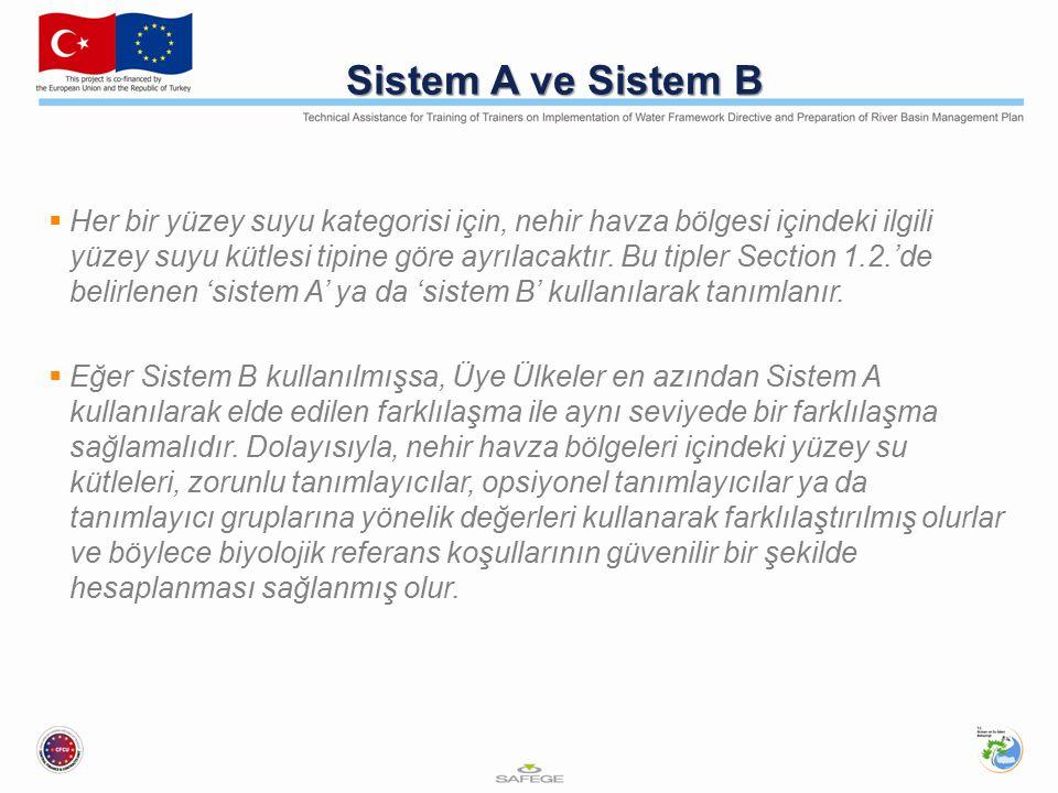 Sistem A ve Sistem B  Her bir yüzey suyu kategorisi için, nehir havza bölgesi içindeki ilgili yüzey suyu kütlesi tipine göre ayrılacaktır.