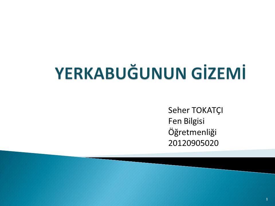 Seher TOKATÇI Fen Bilgisi Öğretmenliği 20120905020 1