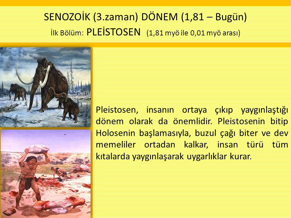 Pleistosen, insanın ortaya çıkıp yaygınlaştığı dönem olarak da önemlidir. Pleistosenin bitip Holosenin başlamasıyla, buzul çağı biter ve dev memeliler