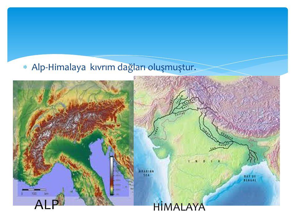 Alp-Himalaya kıvrım dağları oluşmuştur. ALP HİMALAYA
