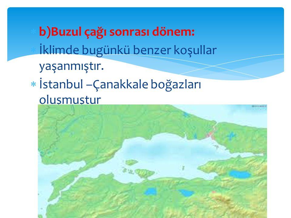  b)Buzul çağı sonrası dönem:  İklimde bugünkü benzer koşullar yaşanmıştır.
