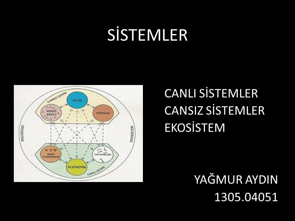 SİSTEMLER CANLI SİSTEMLER CANSIZ SİSTEMLER EKOSİSTEM YAĞMUR AYDIN 1305.04051