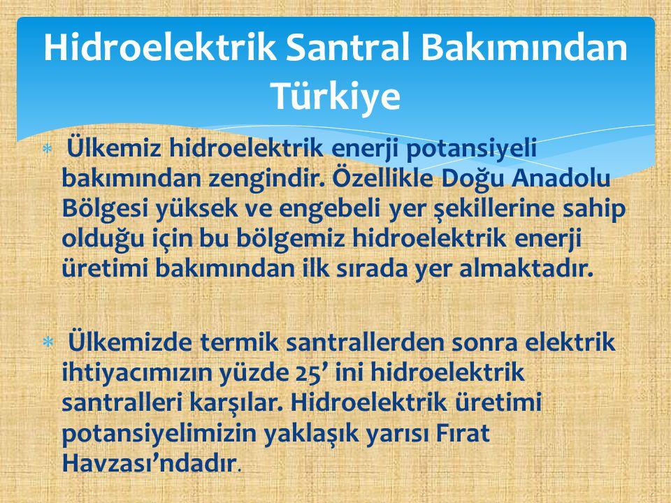 Ülkemiz hidroelektrik enerji potansiyeli bakımından zengindir. Özellikle Doğu Anadolu Bölgesi yüksek ve engebeli yer şekillerine sahip olduğu için b