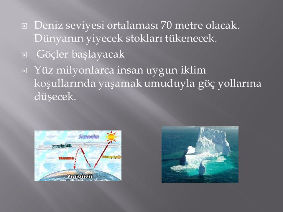  Deniz seviyesi ortalaması 70 metre olacak.Dünyanın yiyecek stokları tükenecek.