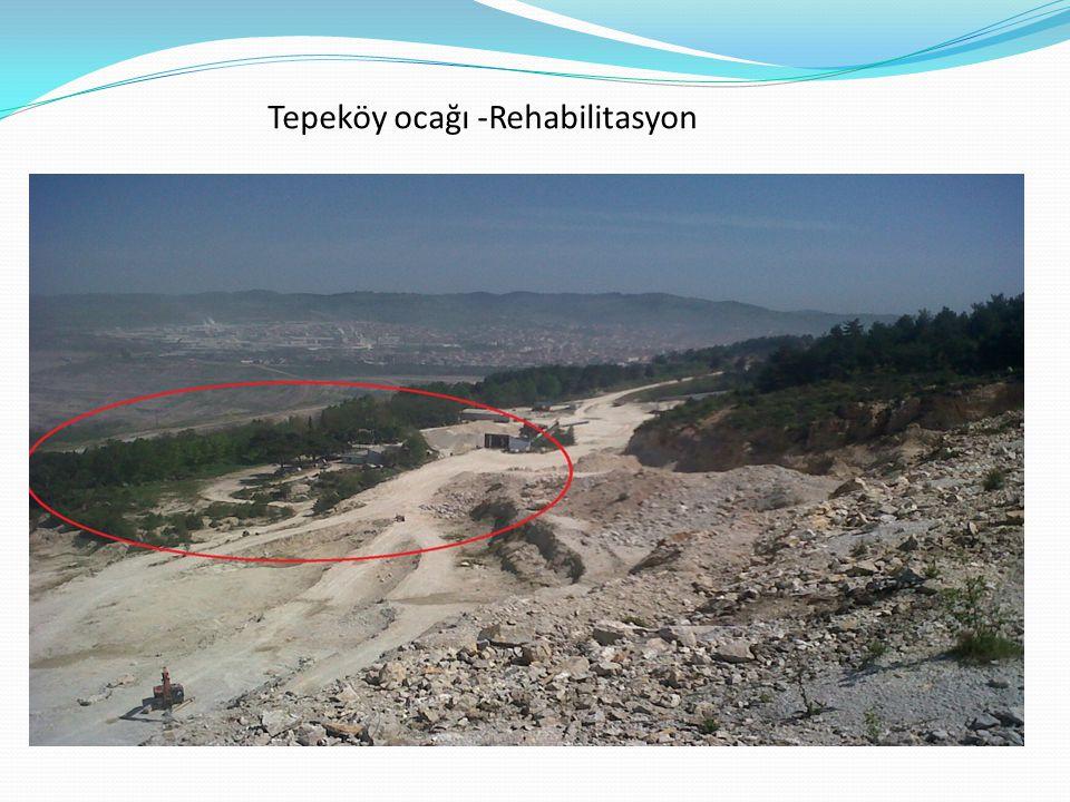 Tepeköy ocağı -Rehabilitasyon