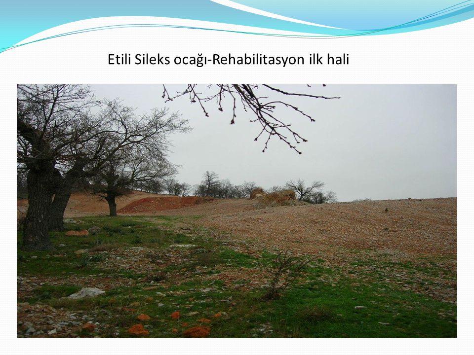 Etili Sileks ocağı-Rehabilitasyon ilk hali