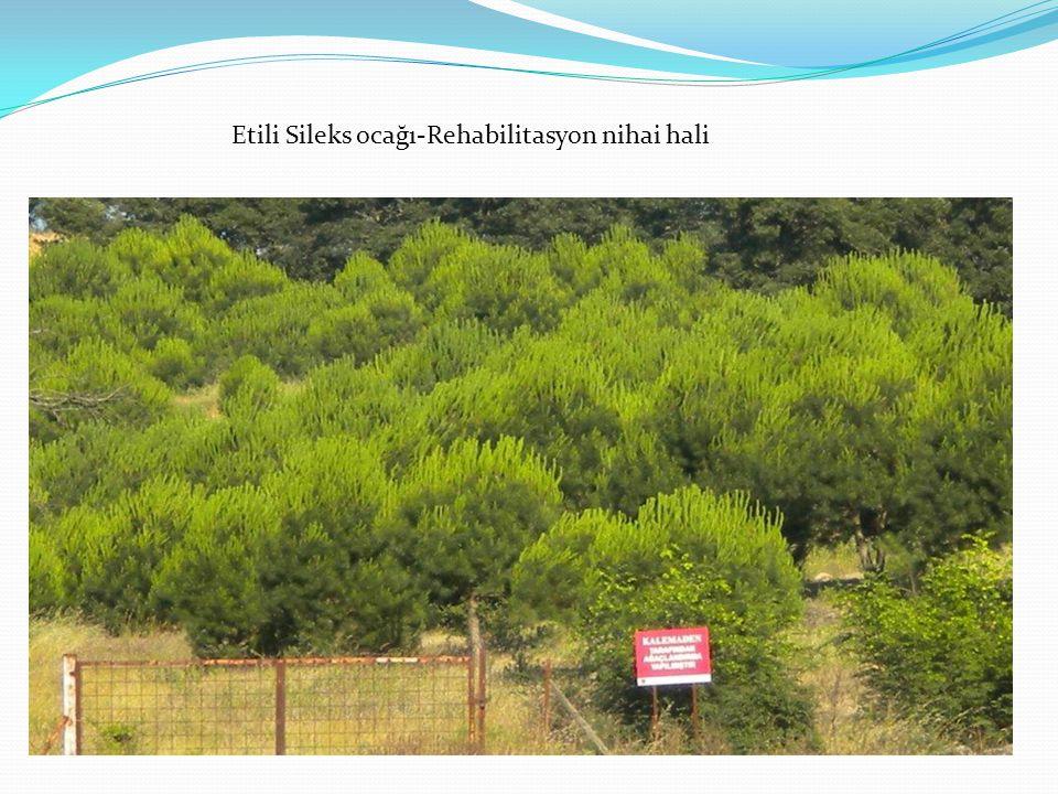 Etili Sileks ocağı-Rehabilitasyon nihai hali