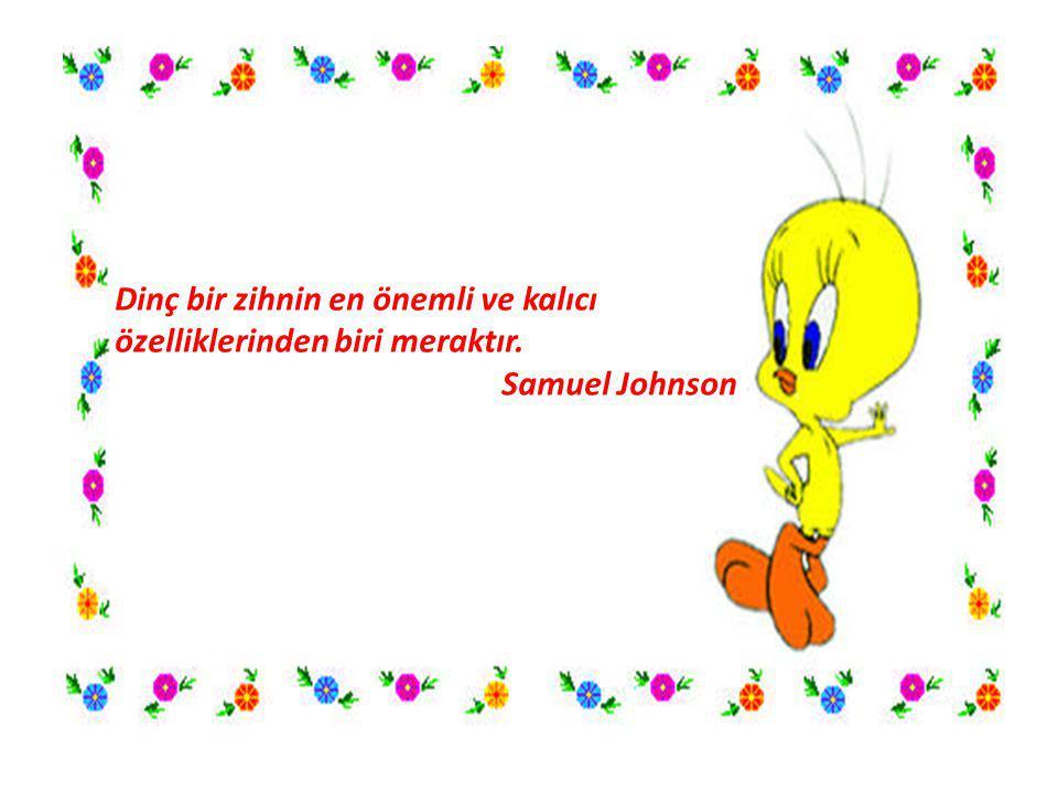 Dinç bir zihnin en önemli ve kalıcı özelliklerinden biri meraktır. Samuel Johnson