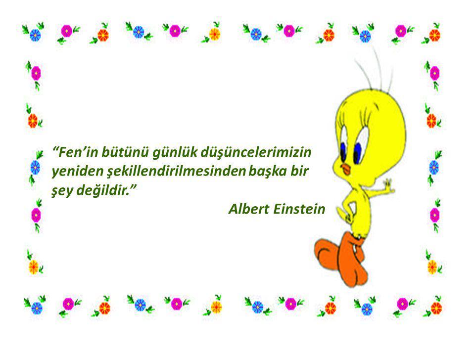 """""""Fen'in bütünü günlük düşüncelerimizin yeniden şekillendirilmesinden başka bir şey değildir."""" Albert Einstein"""
