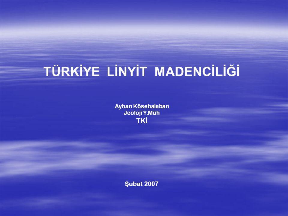 TÜRKİYE LİNYİT MADENCİLİĞİ Ayhan Kösebalaban Jeoloji Y.Müh TKİ Şubat 2007