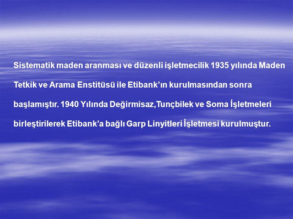Sistematik maden aranması ve düzenli işletmecilik 1935 yılında Maden Tetkik ve Arama Enstitüsü ile Etibank'ın kurulmasından sonra başlamıştır. 1940 Yı