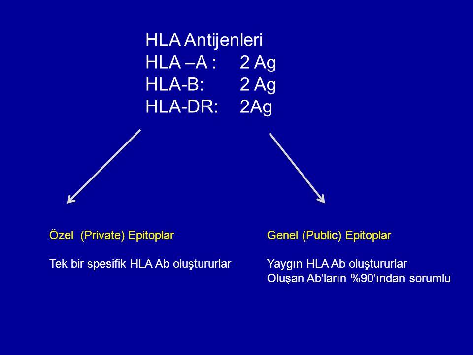 HLA Antijenleri HLA –A : 2 Ag HLA-B:2 Ag HLA-DR: 2Ag Özel (Private) Epitoplar Tek bir spesifik HLA Ab oluştururlar Genel (Public) Epitoplar Yaygın HLA