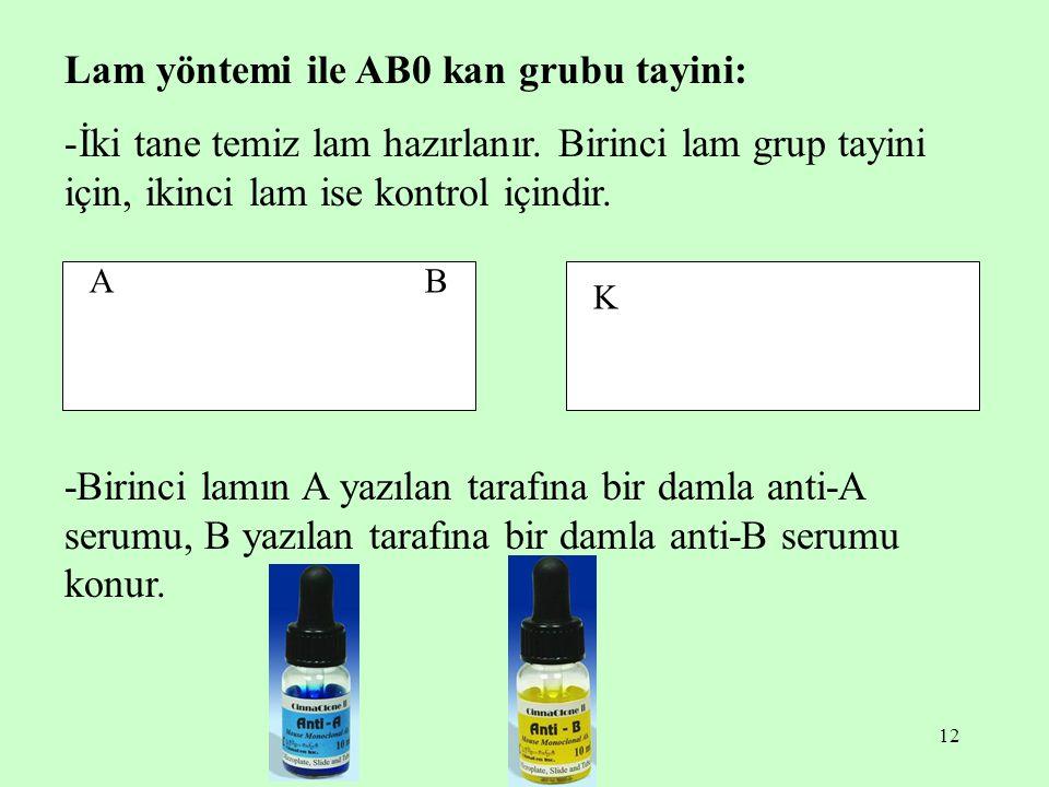 12 Lam yöntemi ile AB0 kan grubu tayini: -İki tane temiz lam hazırlanır. Birinci lam grup tayini için, ikinci lam ise kontrol içindir. -Birinci lamın